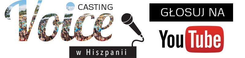 logo-voice